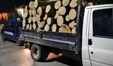 Camionetă plină cu lemn de stejar, oprită de jandarmi. Ce nereguli s-au găsit