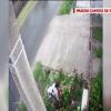 Video – O femeie a fost prinsă în timp ce fura flori pe o stradă din Răcari