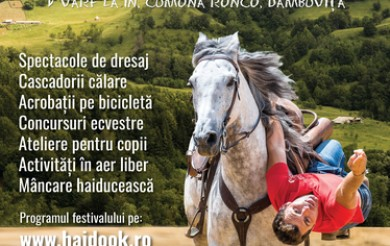 Între 21 şi 23 iunie, a patra ediţie a Haidook Summer Fest, la Runcu, în Vârf la In