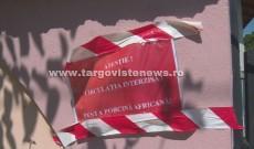 Ultima oră! Pestă porcină africană, în două gospodării din comuna Poiana