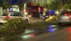 Doi tineri din Dâmboviţa au făcut accident, aseară, în Bucureşti