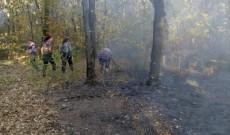 Un incendiu de vegetaţie a pus în primejdie pădurea de la Ulieşti