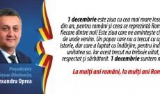 """""""1 decembrie suntem noi, românii!"""""""