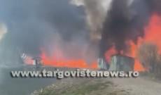 Un incendiu de proporții în Lazuri a provocat pagube de 20.000 de euro