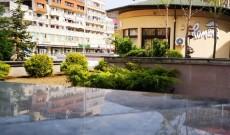Târgovişte – Se plantează arborii şi arbuştii în Piaţa Tricolorului