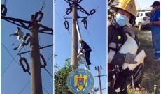 O barză prinsă între firele de electricitate a fost salvată de pompieri, la Bilciurești