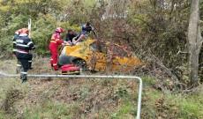 Doi pasageri au fost răniţi după ce o maşină a ajuns într-o pădure
