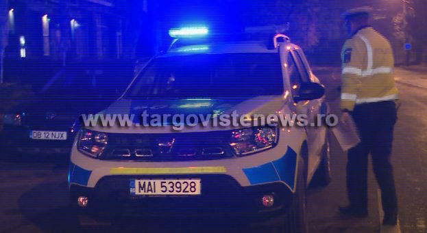 Şapte dâmboviţeni au fost reţinuţi după ce au furat trei maşini şi mai multe componente auto