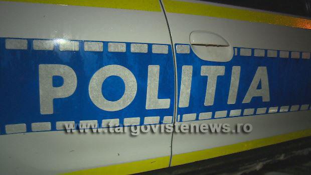 Poliţiştii dâmboviţeni, cu ochii pe transporturile de lemne