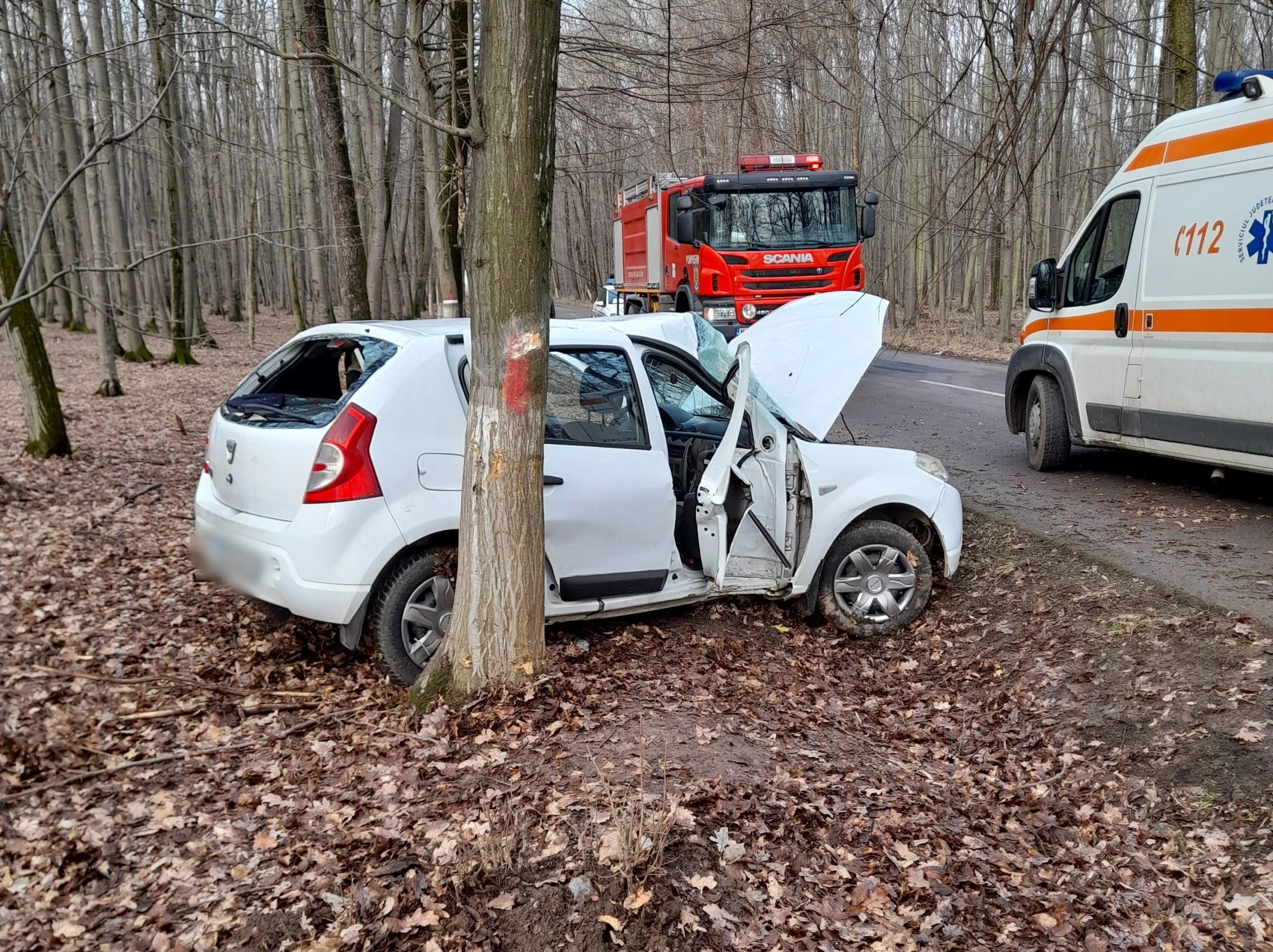 Un şofer, de 19 ani şi-a avariat maşina într-o pădure. El şi o pasageră au fost răniţi