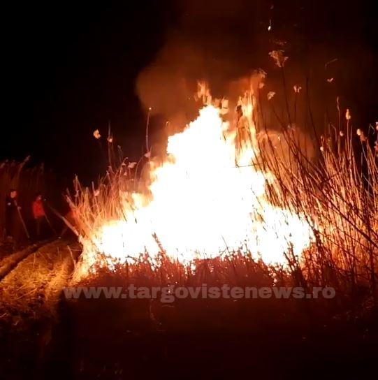 Un incendiu de vegetaţie a izbucnit la Lucieni. Ce riscă cei care au pus focul intenţionat