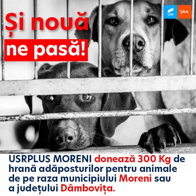 USRPLUS Moreni donează 300 de kilograme de hrană pentru animalele fără stăpân