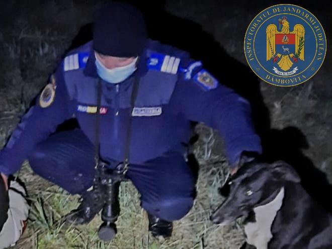 Braconier, prins de jandarmi pe câmpul de la Mătăsaru