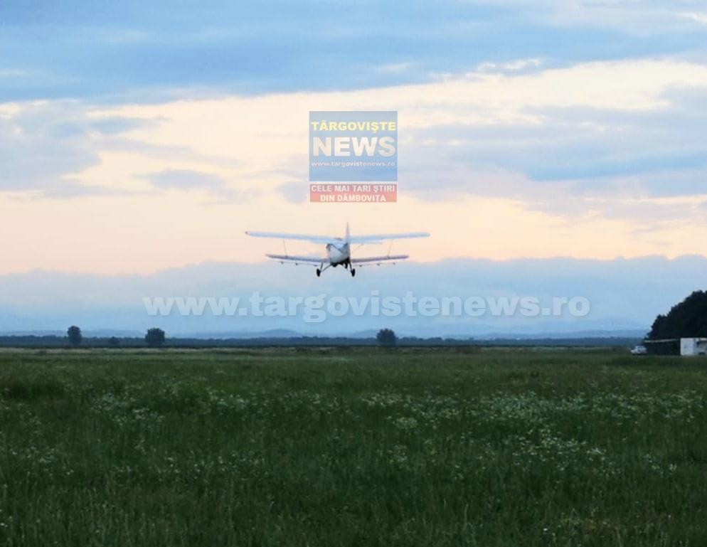 Târgovişte – Aviotratamente pentru combaterea insectelor de disconfort