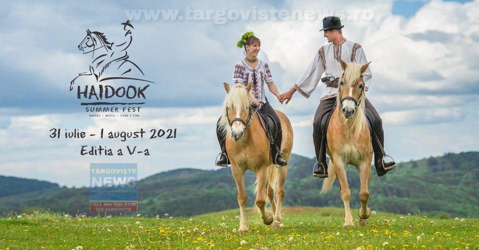 Pe 31 iulie și 1 august are loc cea de-a 5-a ediție a Haidook Summer Fest, la Runcu