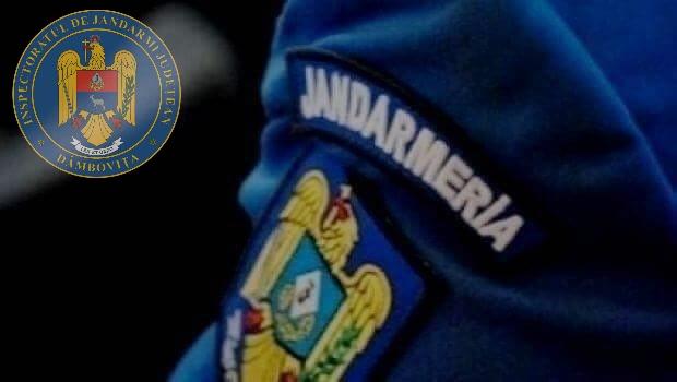 Jandarmeria Dâmbovița a  scos la concurs două posturi de ofițer și trei posturi de subofițer